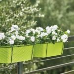 Горшки и вазоны для цветов